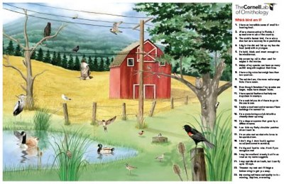 Free Backyard Birds Poster