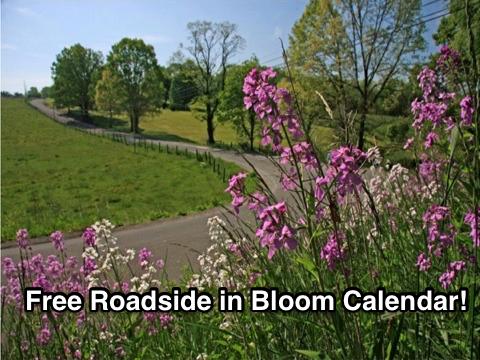 Free Roadside Bloom Calendar