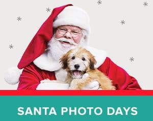 PetSmart Free Pet Photo