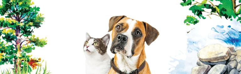 Free Inception Pet Food